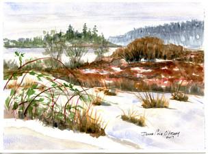 Snow West Saanich  17/033
