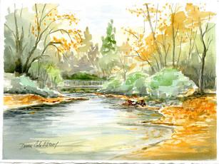 Autumn, Goldstream Park 19/025