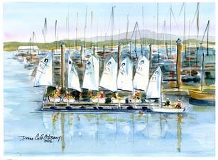 Sailing Lesson Oak Bay 16/028