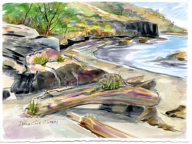 Cliffs, Fort Rodd Hill 19/011