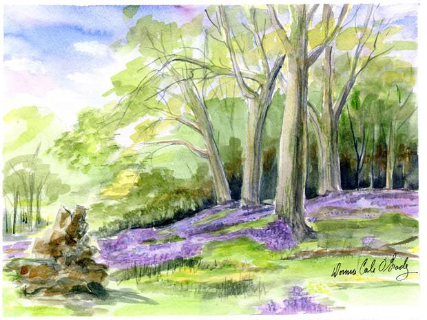 Camas Blooming, Playfair Park 10/020