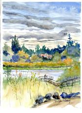 Swan Lake 17/002