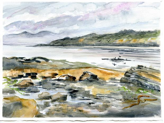 Mist, Clover Point 19/008