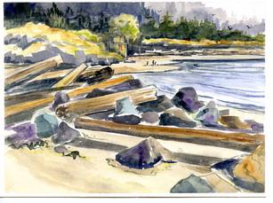 Logs Fort Rodd Hill 17/020