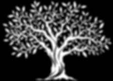 olive tree graphic logo