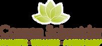 Logo_CSchneider_2016.png