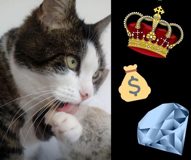 Mein täglicher, günstiger Luxus | My Daily, Frugal Luxuries