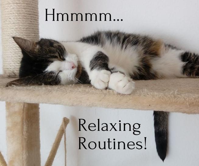 5 Gründe Routinen in Betracht zu ziehen | 5 Reasons To Consider Routines