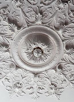 Molures dans lessalles de l'Hôtel Château de la Marlière Fourmie