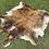 Thumbnail: Cowhide 71