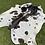 Thumbnail: Cowhide 04