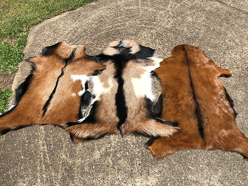 Australian Goat Skin (limited stock) message for photos