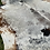Thumbnail: Cowhide 21