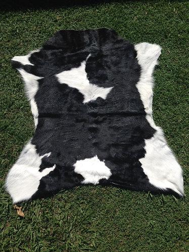 Calf Hides