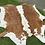 Thumbnail: Cowhide 55