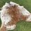 Thumbnail: Cowhide 20