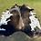 Thumbnail: Cowhide 34