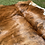 Thumbnail: Cowhide 86