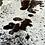 Thumbnail: Cowhide 10