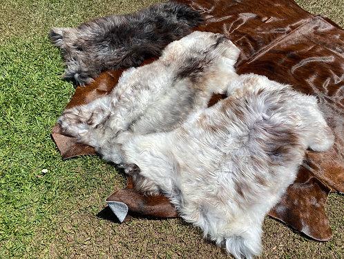 Natural long wool icelandic Single Sheepskin