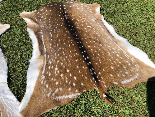 Queensland Chital and Fallow Deer Skin