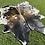 Thumbnail: Cowhide 54