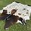 Thumbnail: Cowhide 67
