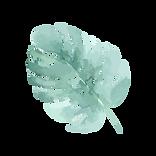 Tropische Blätter 4