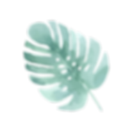 Tropical Leaves 4