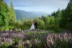 Tin Poppy Wedding