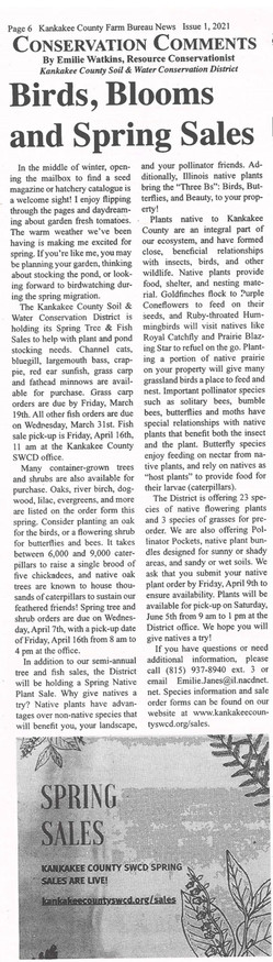 Spring 2021 Sales Article