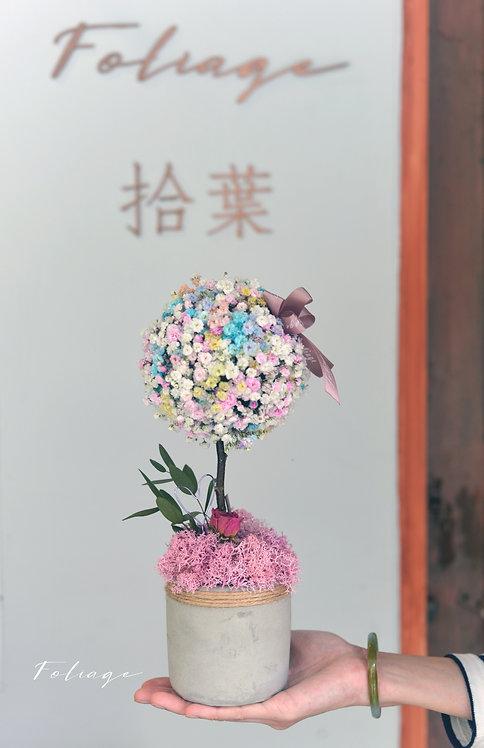 鮮花檯花擺設- 彩虹感恩之樹