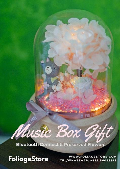 藍芽暖光音樂盒Bluetooth Music Box