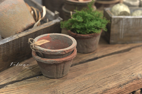 限定 -  栽植紅陶瓷盆器 X 苔蘚自然感