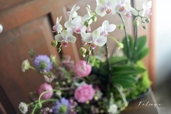 [ CNY flower & Workshop ] 賀年盆景檯花 / 鮮花檯花 及插花課同步接受預訂 及 報名