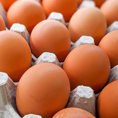 Brown Eggs (Dozen)