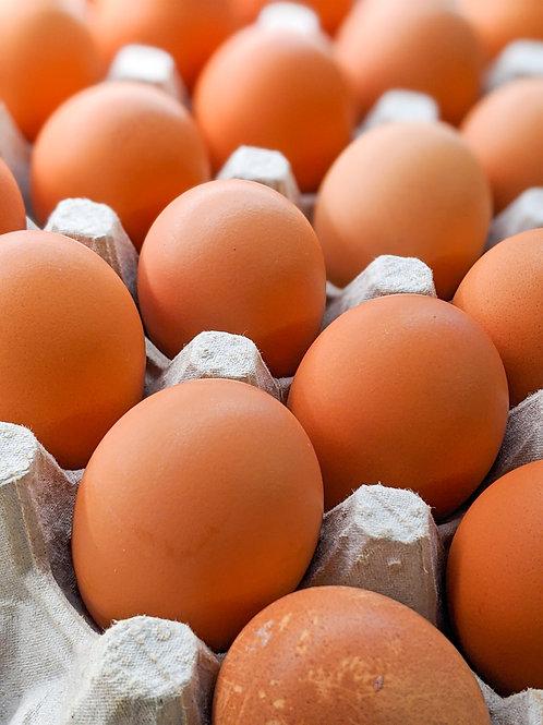 Brown Eggs (Flat)
