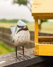 Folk Bird IMG 4.jpeg
