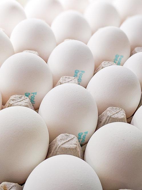 White Eggs (Flat)
