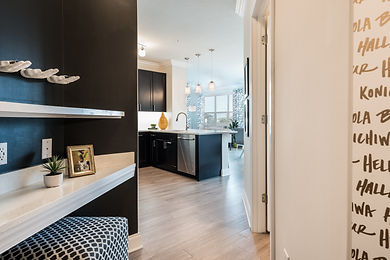 Green Owl Design, Hospitality Design, Condominiums, Remodeling, DC Interior Design, Maryland Interior Design, Modern, Furniture, Living Room, Kitchen
