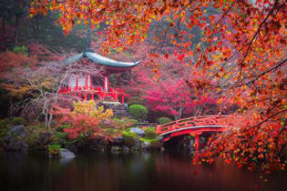 3_japon2019_oasis_voyages.jpg