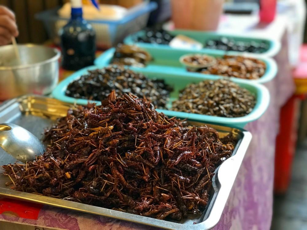 Grasshopper food | Pattaya | Thailand