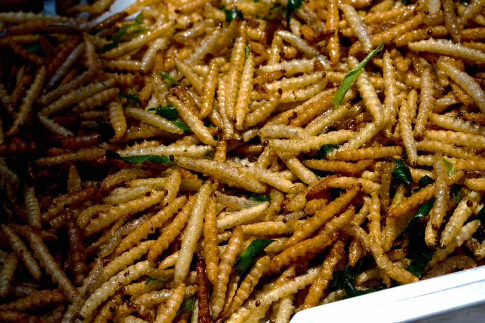 Bamboo Worms | Pattaya | Thailand