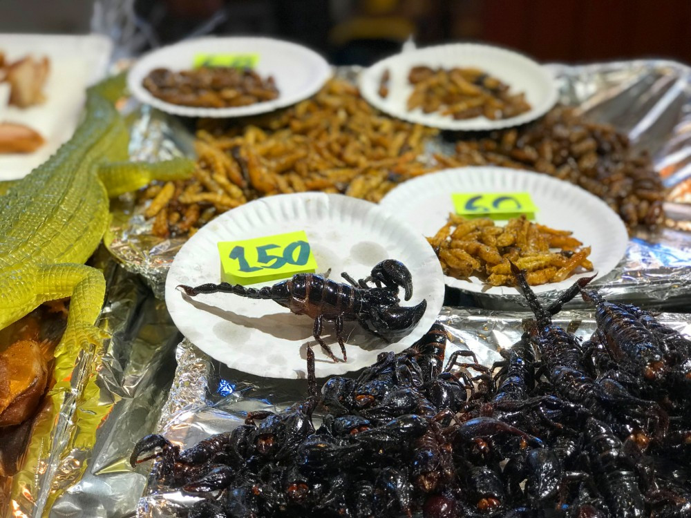 Scorpion Food | Pattaya | Thailand