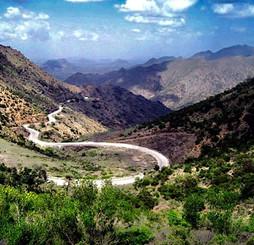 Somaliland Nature