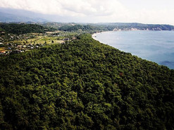 Abhazian Coast