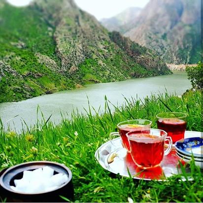 Tea in Kurdistan