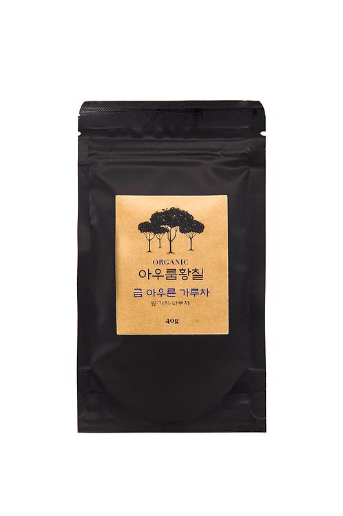 Dendropanax Baum Tee Pulver