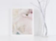 pale pink peonies closeup art print.png
