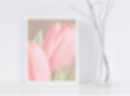 tulips art print.png
